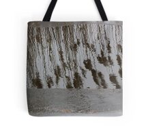 Marsh Grass Reflections with Ice 14 Tote Bag