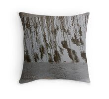 Marsh Grass Reflections with Ice 14 Throw Pillow