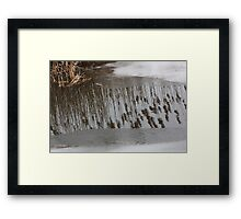 Marsh Grass Reflections with Ice 17 Framed Print