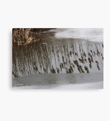 Marsh Grass Reflections with Ice 17 Canvas Print