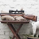 My FX2000 Air Rifle with Dog Freyja by airrifletweaks