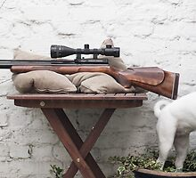 My FX2000 Air Rifle with Dog Freyja by airrifletweaks
