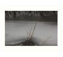 Marsh Grass in Ice Art Print