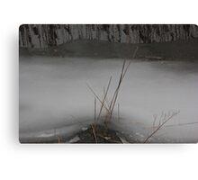 Marsh Grass in Ice Canvas Print
