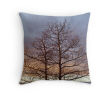 New Mexico sunset silhouette Throw Pillow