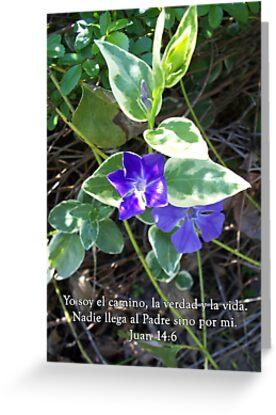 Juan 14:6 Yo soy el camino, la verdad y la vida by WalnutHill