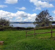 Chew Valley Views by trish725