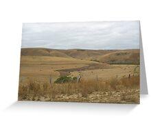 Summer Hills, Carakalinga, South Australia Greeting Card