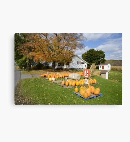 Pumpkin Time Canvas Print