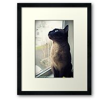 Nini Framed Print