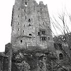 Blarney Castle Co Cork, Ireland by Rowena Dhue