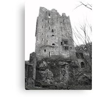 Blarney Castle Co Cork, Ireland Canvas Print