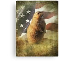 Patriot Canvas Print