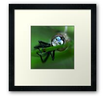The Human Faced Dragon Framed Print