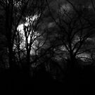 Overcast Afternoons by ReidOriginals