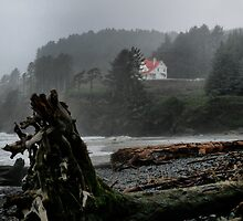 Fog At Heceta Head by Charles & Patricia   Harkins ~ Picture Oregon