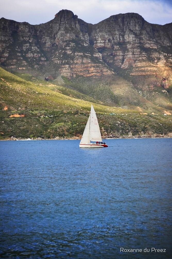 Sailing by Roxanne du Preez