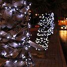 Lights by Roxanne du Preez