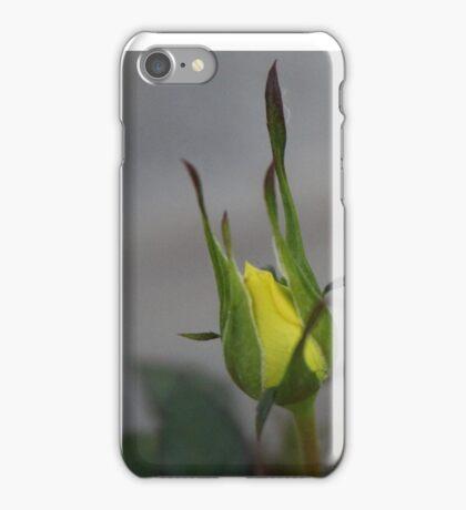 Yellow rosebud iPhone Case/Skin