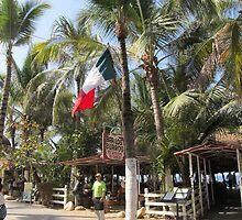 A very Mexican Palm - Una Palma muy Mexicana by PtoVallartaMex
