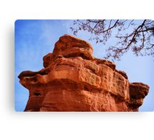Balanced Rock and Tree Canvas Print