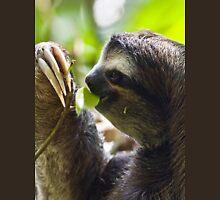 Furry Sloth T-Shirt
