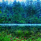 In the Cove at Lake Seed by Chelei