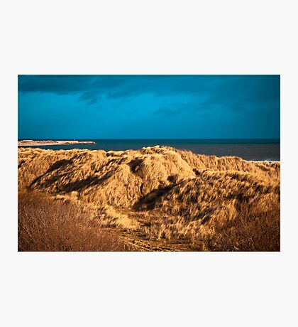 Dune grasses and pier Photographic Print