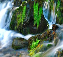 Willow River Falls 6 by Gypsykiss