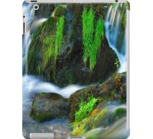Willow River Falls 6 iPad Case/Skin