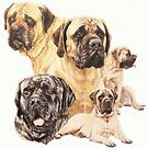 English Mastiff by BarbBarcikKeith