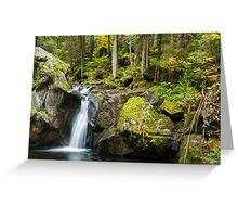 Falls in the Forest Greeting Card
