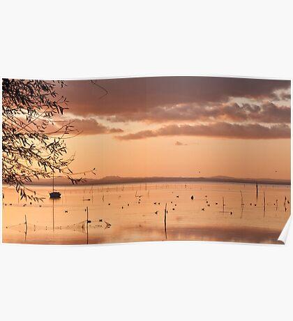Trasimeno lake Poster