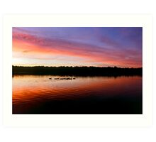 Geese silhouettes at dusk Art Print