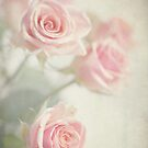 Gently Pastels by AnnieSnel