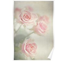 Gently Pastels Poster