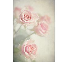 Gently Pastels Photographic Print