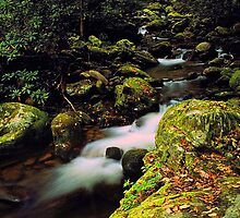 MOUNTAIN STREAM, ROARING FORK by Chuck Wickham