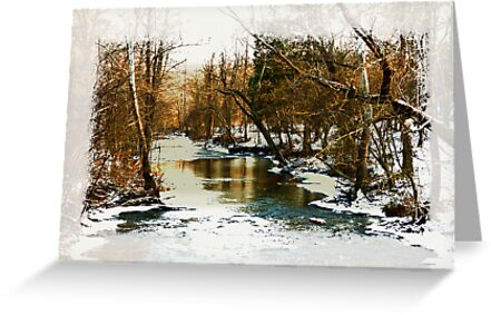 Flowing Winter Creek by Lee Walters Photography