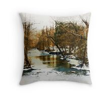 Flowing Winter Creek Throw Pillow