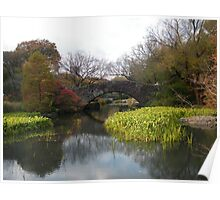 Central Park, Fall Colors Poster