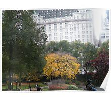 Central Park, Fall Colors, Plaza Hotel Poster