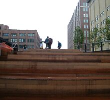 High Line, New York's Elevated Park and Garden  by lenspiro
