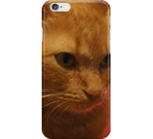 Cat 1 iphone/ipod case iPhone Case/Skin