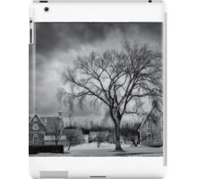 Stormy iPad Case/Skin