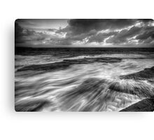 Teased by Nature Canvas Print