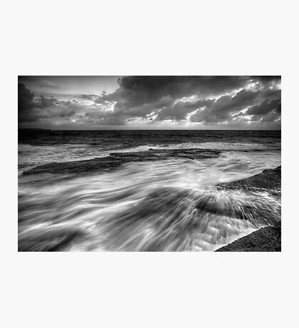 Teased by Nature Photographic Print