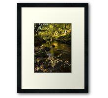 West Beck, Goathland, North Yorkshire Framed Print