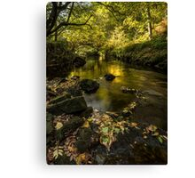 West Beck, Goathland, North Yorkshire Canvas Print