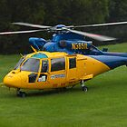 NSW RFS Chopper by Odille Esmonde-Morgan